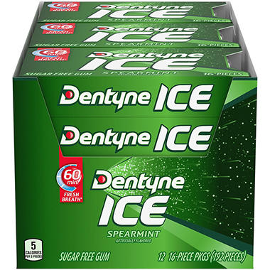 Dentyne Ice Spearmint Sugar Free Gum - 16 ct. - 12 pk.