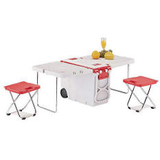 Rolling Table/Cooler