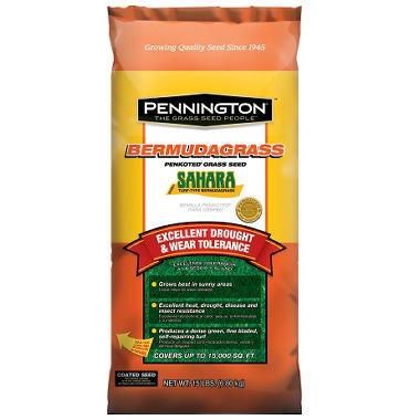 Sahara Bermuda Grass Seed - 15 lb. bag