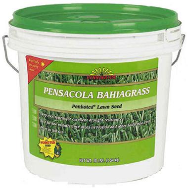 Pennington® Pensacola Bahiagrass - 15 lb. bucket