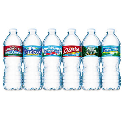 Nestle Bottled Spring Water - 1/2 liter (16.9 oz.) - 24 Bottles