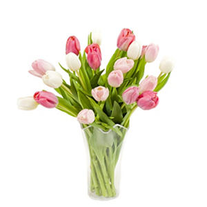 Pink & White Tulip Bouquet