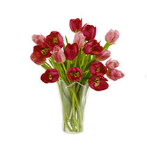Red & Pink Tulip Bouquet