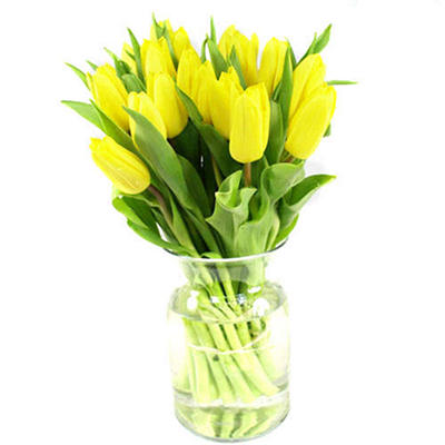 Tulips - Yellow - 100 Stems