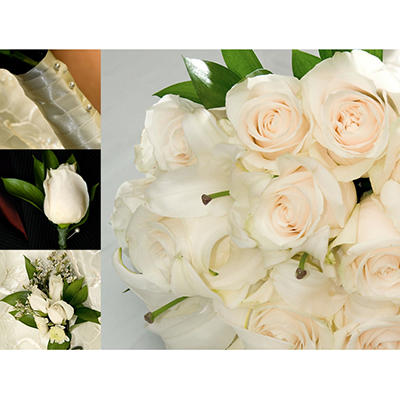 Wedding Collection - White - 17 pc.