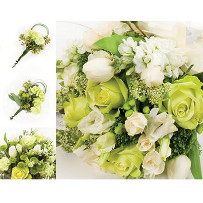 Wedding Collection - Green & White - 17 pc.