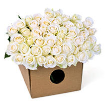 Roses - White - 200 Stems