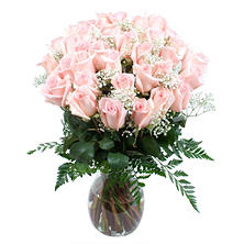 Rose Bouquet, Pink  (36 Stems)
