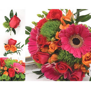 Wedding Collection - Hot Pink, Green, & Orange - 10 pc.