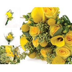 Wedding Collection - Yellow - 43 pc.