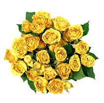 Spray Roses - Yellow - 100 Stems