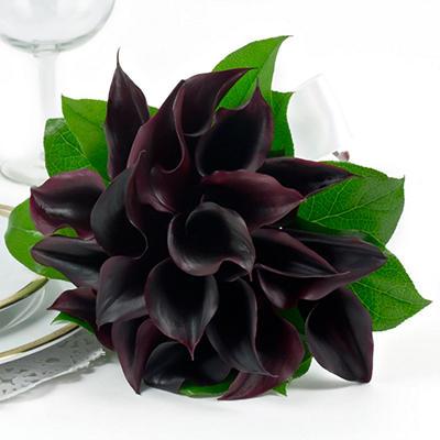 Wedding Collection - Black Mini Calla  - Bridesmaid Bouquets - 2pc