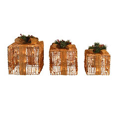 Sugared Grapevine Gift Boxes (Set of 3)