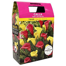 Calla Mixed Bulbs