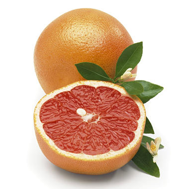 Texas Grapefruits - 8 lbs.