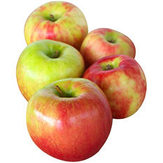 Honeycrisp Apple - 4 lb.