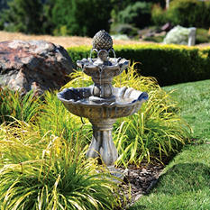 Patella Fountain