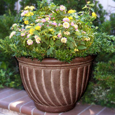 Tecate Clay Pottery Spiral Planter - Cafe