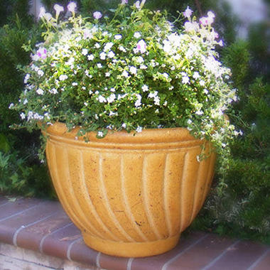 Tecate Clay Pottery Spiral Planter - Ochre