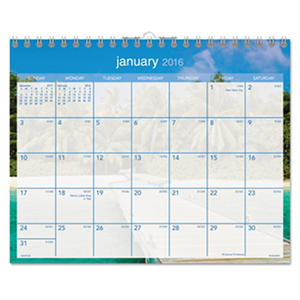 AT-A-GLANCE - Tropical Escape Wall Calendar, 15 x 12 -  2016