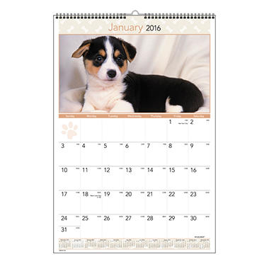 AT-A-GLANCE - Puppies Monthly Wall Calendar, 15 1/2 x 22 3/4 -  2016