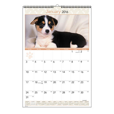 AT-A-GLANCE Recycled Puppies Wall Calendar, 15-1/2 x 22-3/4 -  2015