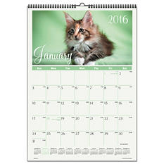 AT-A-GLANCE - Kittens Wall Calendar, 12 x 17 -  2016