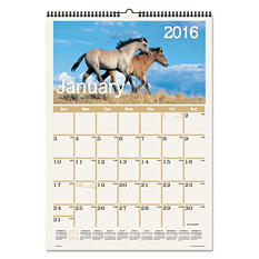 AT-A-GLANCE - Horses Monthly Wall Calendar, 12 x 17 -  2016
