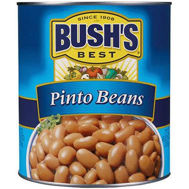 Bush's Best Pinto Beans - 111 oz.