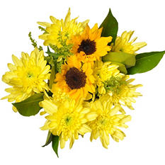 Sunshine Mixed Bouquet - 7 pk.