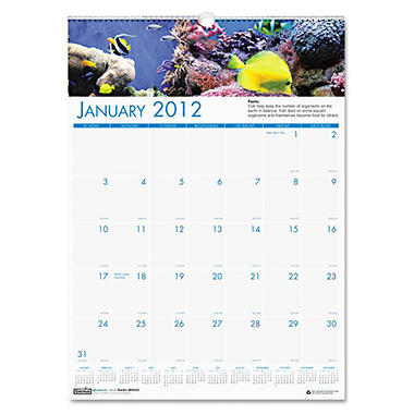 House of Doolittle - Sea Life Scenes Monthly Wall Calendar, 12 x 16-1/2, 2013