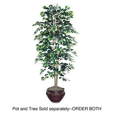 NuDell 6ft Artificial Ficus Tree