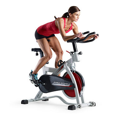 ProForm� 290 SPX Exercise Bike