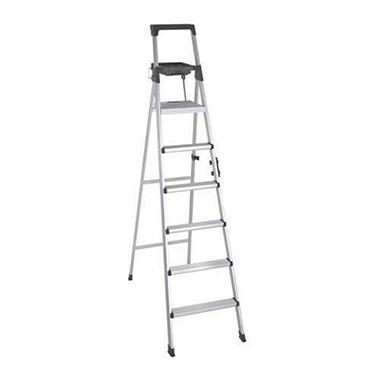 8' Type 1A Ladder