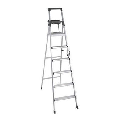 8' Type 1A Ladder