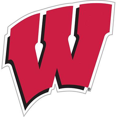 NCAA Wisconsin Badgers Team Magnet