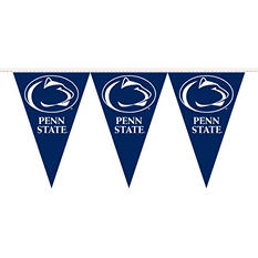 NCAA Penn State Nitty Lions Party Pennant