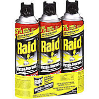 Raid ® Wasp & Hornet Killer - 3 pk./17.5 oz.