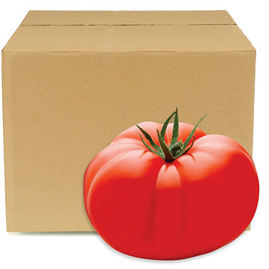Sunset Tomatoes (25 lbs.)