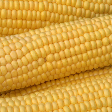 Flav-R-Pac Super Sweet Cob Corn - 8 / 3 ears