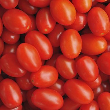 Splendido Tomato - 2 lbs.