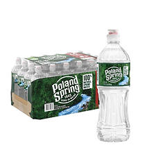 Poland Spring® Natural Spring Water - 24/700mL