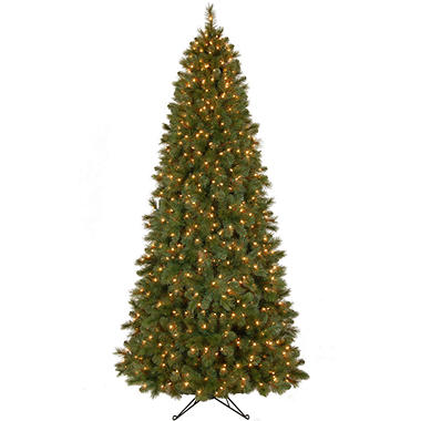 9' Scotch Pine Pre-Lit Slim Tree
