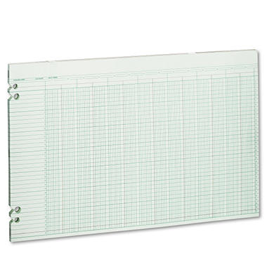 11x17 Accounting Sheets - 100 Loose Sheets