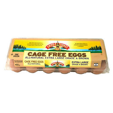Land O'Lakes Cage Free Grade A A Brown Eggs - XL - 1 doz.