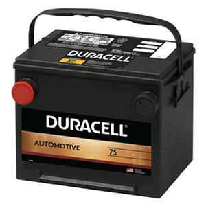 Duracell? Automotive Battery - Group Size 75