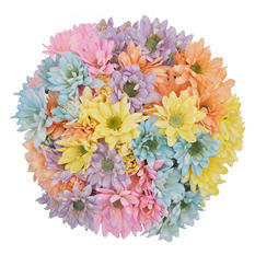 Poms - Pastel Assorted - 60 Stems