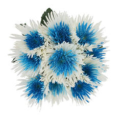 Innie/Outtie Disbuds - Turquoise and White (60 Stems)
