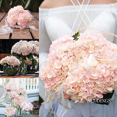 Elite Hydrangeas - Bridal Pink - 15 Stems