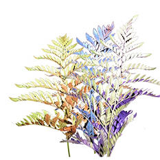 Assorted Metallic Mixed Greens - 50 Stems
